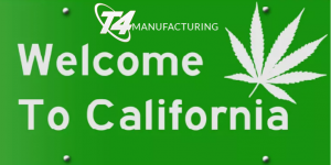 cannabis oil manufacturing rio vista california